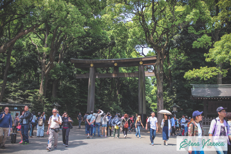 Ingresso al parco Yoyogi