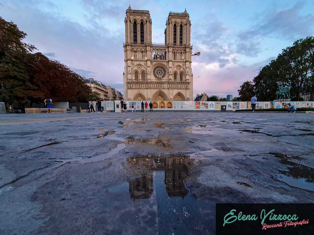 Notre Dame de Paris - Elena Vizzoca