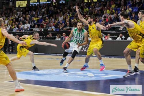 Iberostar Tenerife Vs Coosur Real Betis